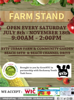 Youth Market @ Rockaway Youth Task Force Urban Farm | New York | United States